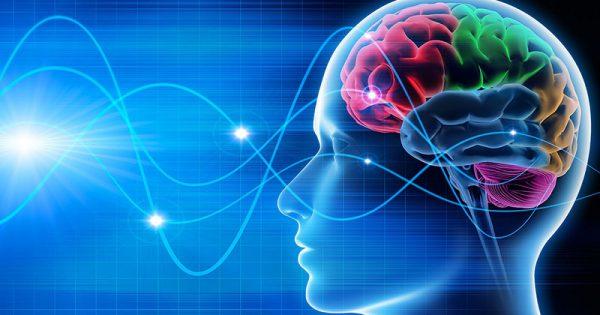 التقاط نورومارکتینگ و رفتار مصرف کننده
