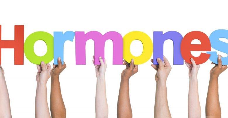 نقش هورمون ها در مدیریت منابع انسانی